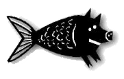 Hogfish logo no text